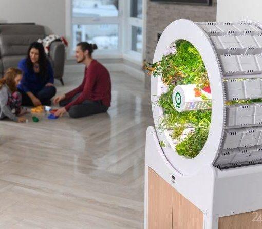 OGarden Smart – компактное устройство для выращивания различных культур прямо у вас в квартире. 17