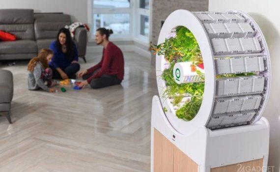 OGarden Smart – компактное устройство для выращивания различных культур прямо у вас в квартире. 3