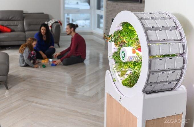 OGarden Smart – компактное устройство для выращивания различных культур прямо у вас в квартире. 1