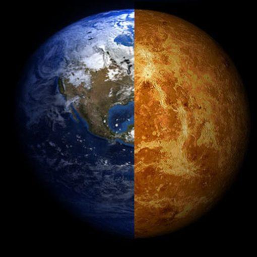 Есть ли жизнь на Венере? Российские ученые нашли на Венере «грибы», «скорпиона» и «ящерицу» 7