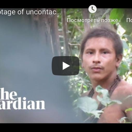 Видео дня: представитель неконтактного амазонского племени 3