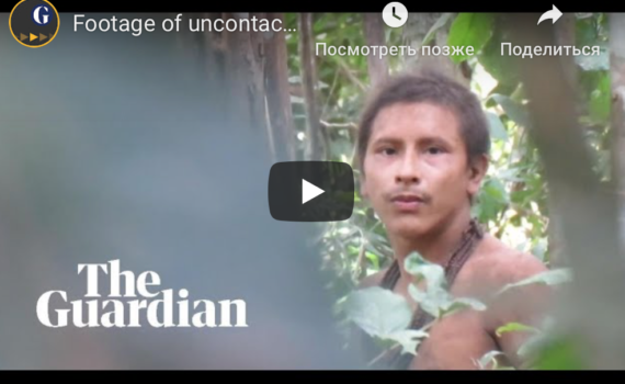 Видео дня: представитель неконтактного амазонского племени 12