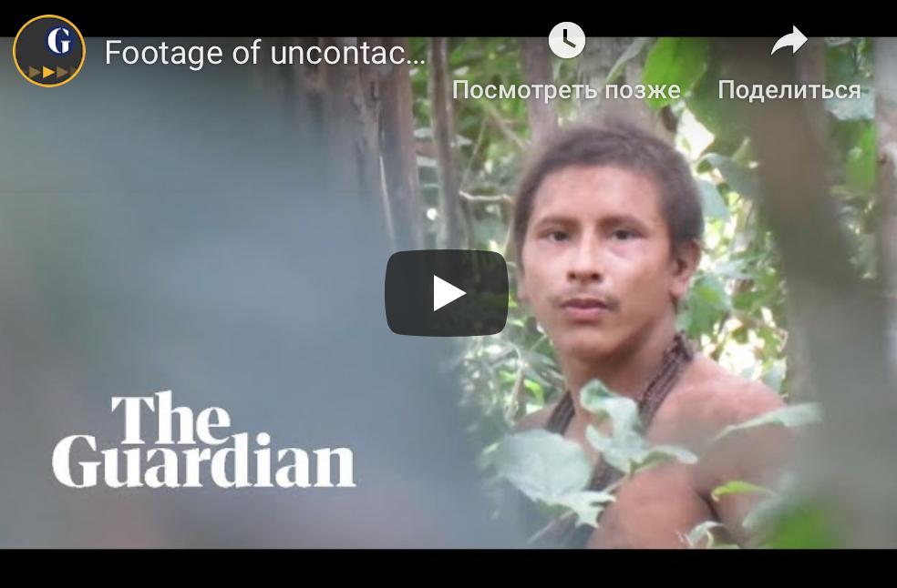 Видео дня: представитель неконтактного амазонского племени 1