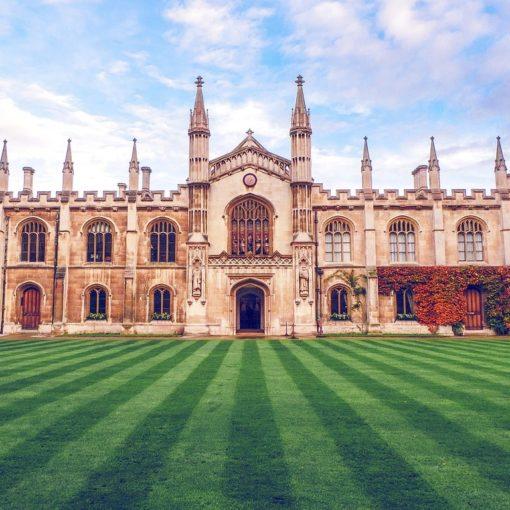 Топ-100 лучших университетов мира за 2018-2019 3