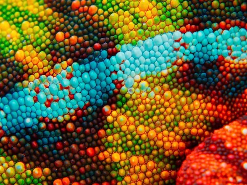 Создан материал, меняющий цвет подобно хамелеону, работающий на наномашинах 4