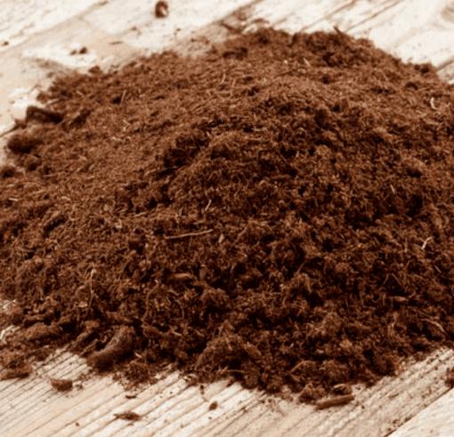 Из грязи – в лекарства: в торфе и угле нашли противовирусные вещества 5