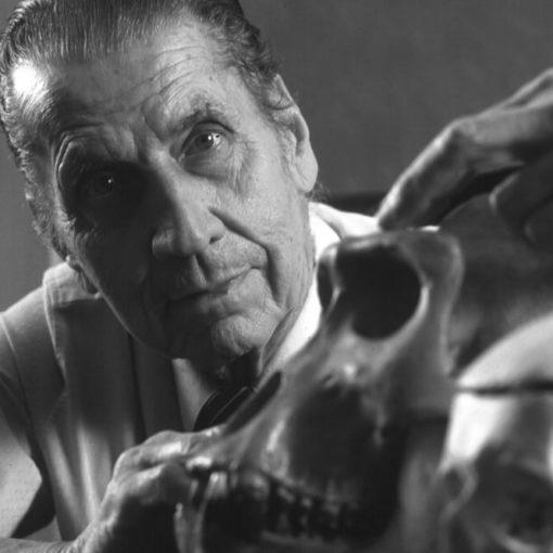 Управление мозгом по методу Хосе Дельгадо 39