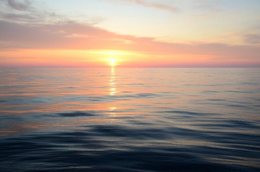 Чёрное море: уникальная и загадочная экосистема 12